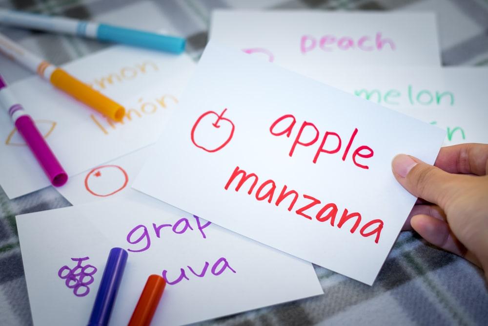 Les bilingues peuvent faire l'apprentissage de deux langues